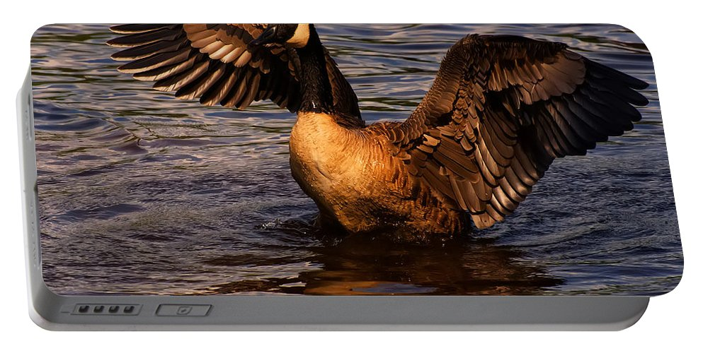 Bird Portable Battery Charger featuring the digital art Goose Preparing For Flight by Chris Flees