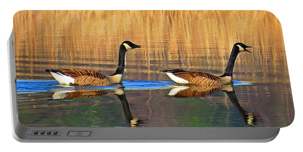 Canadian Geese Portable Battery Charger featuring the photograph Goose Talk Too by MTBobbins Photography