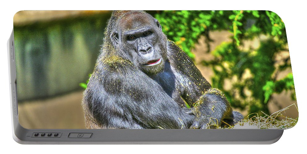 Zoo Portable Battery Charger featuring the photograph Gorilla by SC Heffner