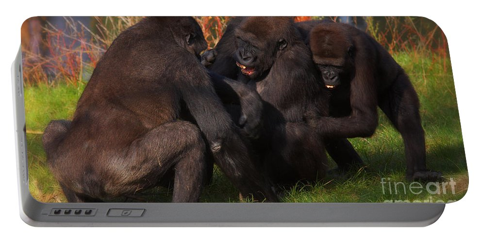 Monkey Portable Battery Charger featuring the photograph Gorillas Having Fun Together by Nick Biemans