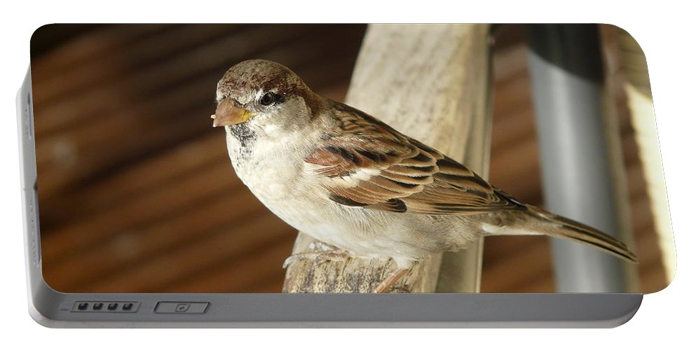 Bird Portable Battery Charger featuring the photograph Got Some More by Valerie Ornstein