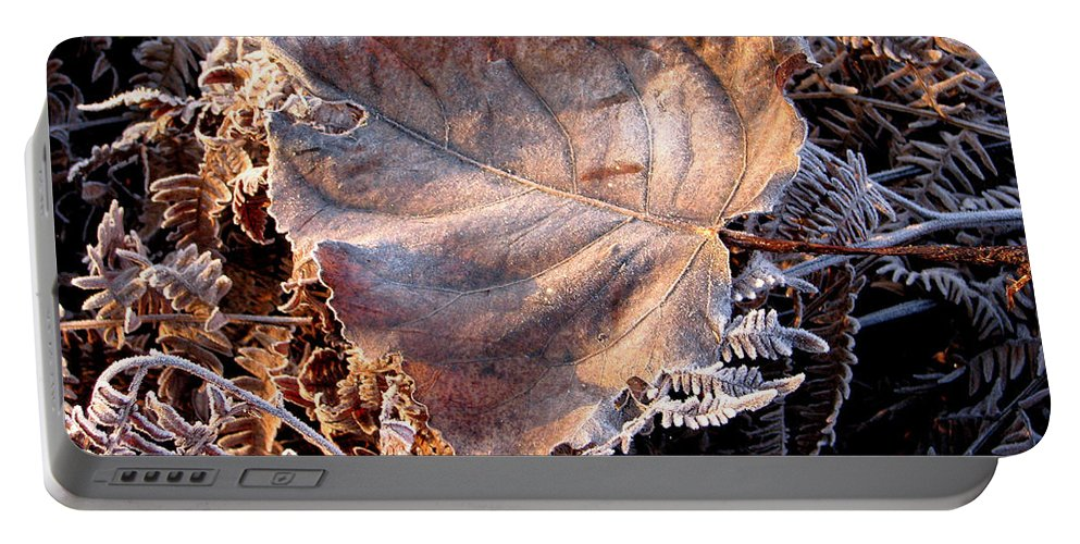 Fall Portable Battery Charger featuring the photograph Graced By Frost by Rory Sagner