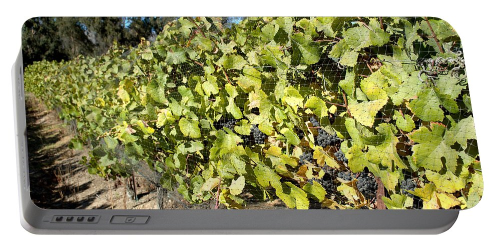 Barbara Snyder Portable Battery Charger featuring the digital art Grapes On The Vine by Barbara Snyder