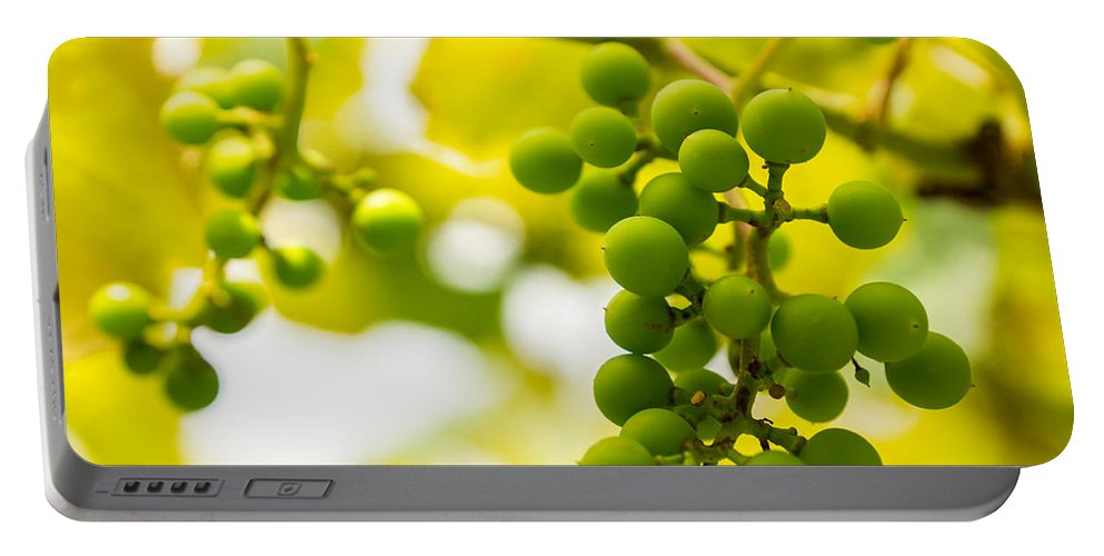 Grape Portable Battery Charger featuring the photograph Grapes On The Vine - Finger Lakes Vineyard by Photographic Arts And Design Studio