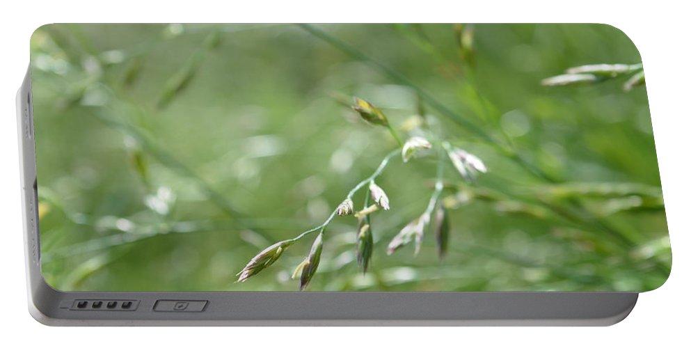 Grass Portable Battery Charger featuring the photograph Grass Blade by Wayne Schmitt