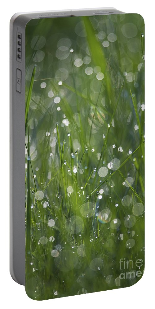 Nina Stavlund Portable Battery Charger featuring the photograph Grass Fairies... by Nina Stavlund