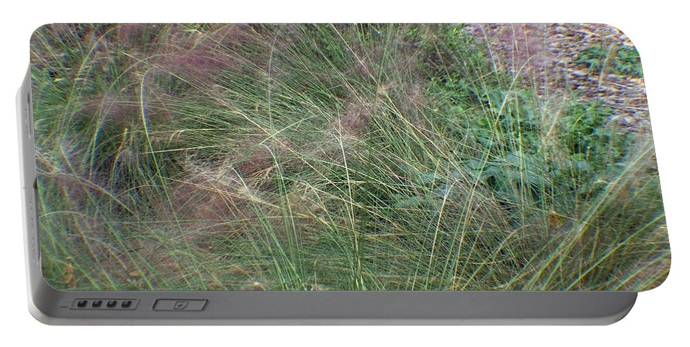 Grass Portable Battery Charger featuring the photograph Grass In The Wind by Jo Jurkiewicz