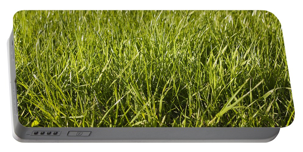 Fresh Grass Portable Battery Charger featuring the photograph Grass by Tim Hester