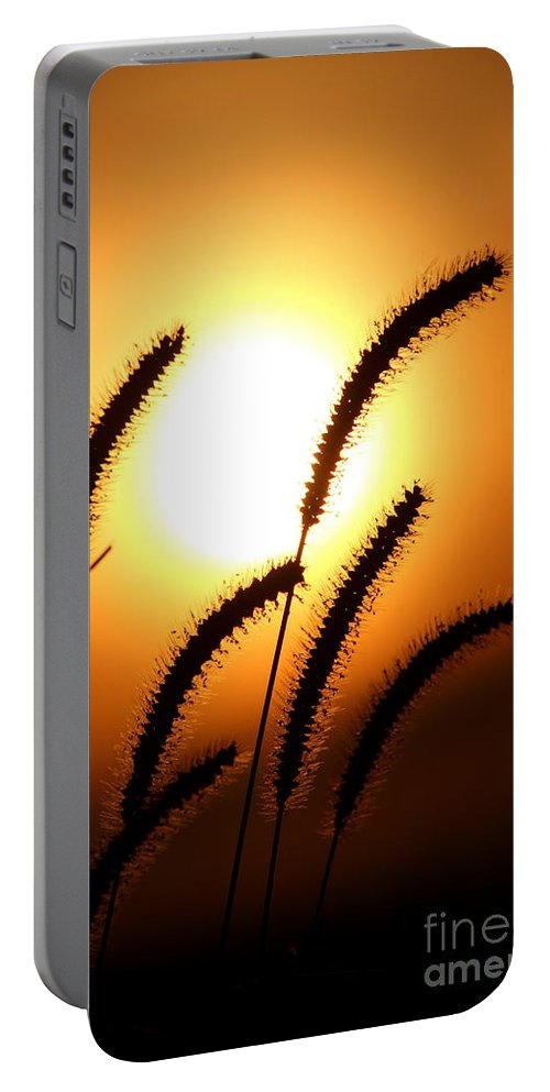 Sun Portable Battery Charger featuring the photograph Grasses At Sunset - 2 by Kenny Glotfelty