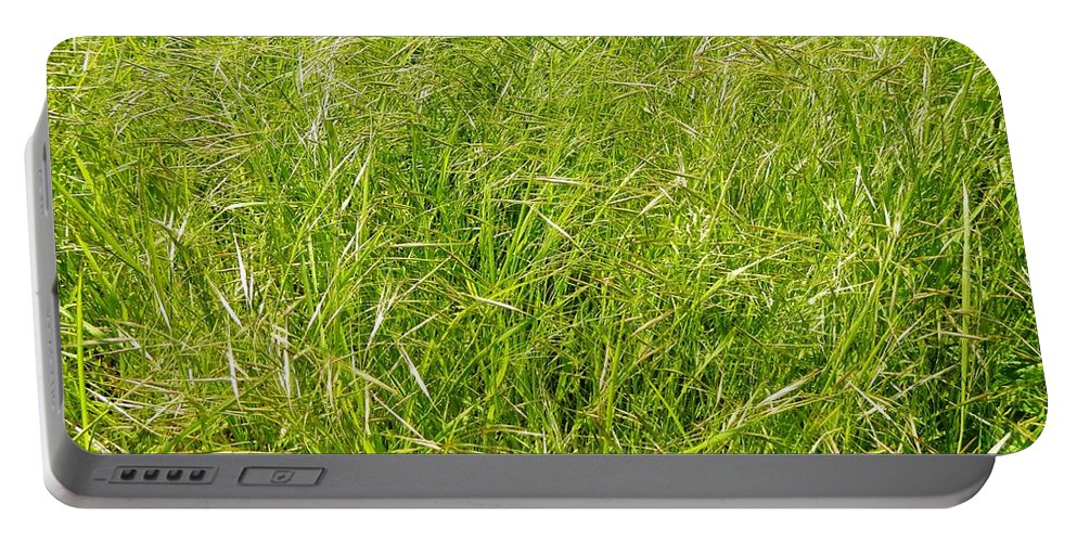 Grass Portable Battery Charger featuring the photograph Grasses by Loreta Mickiene