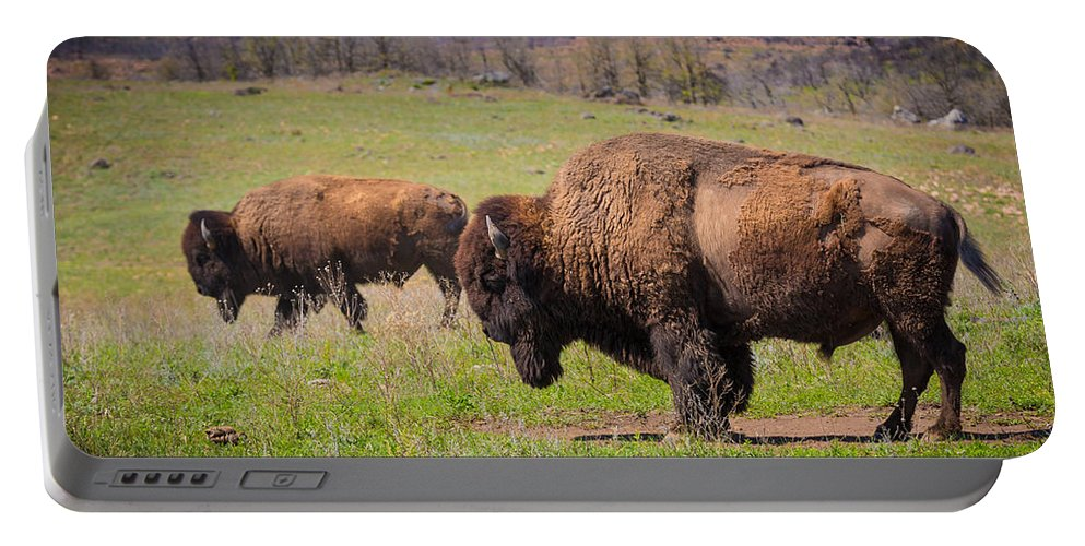 America Portable Battery Charger featuring the photograph Grazing Bison by Inge Johnsson