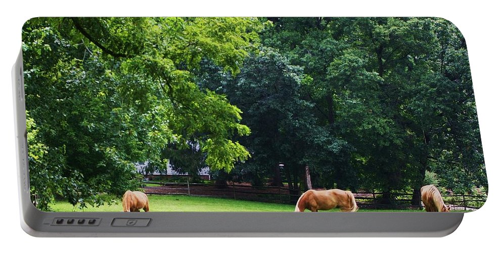 Pasture Portable Battery Charger featuring the photograph Grazing by Chuck Hicks
