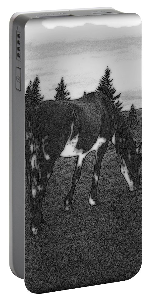 Horse Portable Battery Charger featuring the photograph Grazing by Kathy Sampson