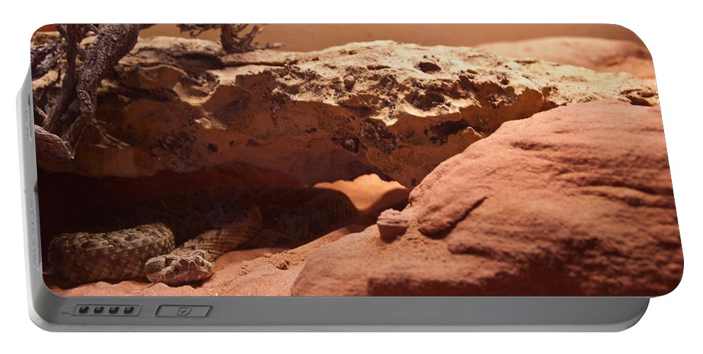 Reptile Portable Battery Charger featuring the photograph Great Basin Rattlesnake by Douglas Barnett