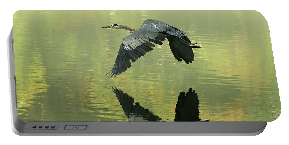 Blue Portable Battery Charger featuring the photograph Great Blue Fly-by by Douglas Stucky