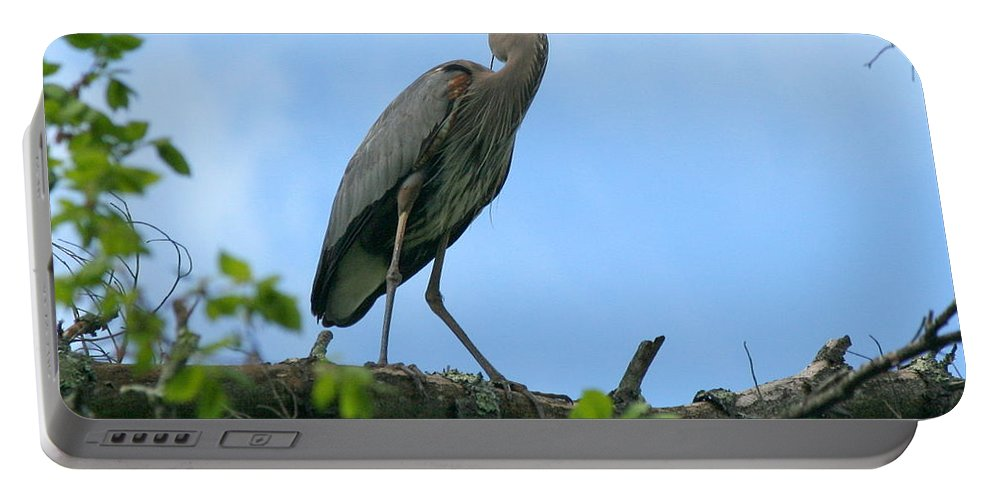 Heron Portable Battery Charger featuring the photograph Great Blue Heron Afternoon Fishing by Neal Eslinger