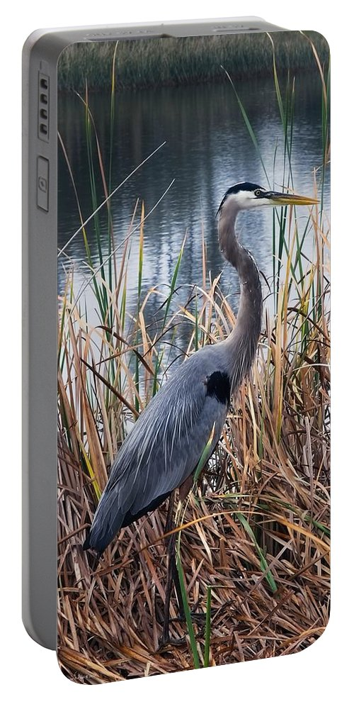 Great Blue Heron Portable Battery Charger featuring the photograph Great Blue Heron by Chrystyne Novack
