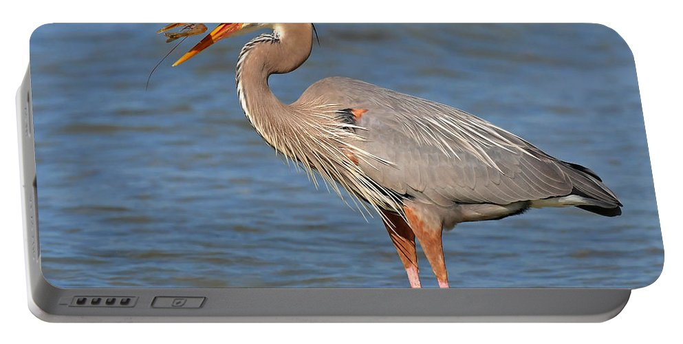 Great Blue Heron Portable Battery Charger featuring the photograph Great Blue Heron Flipping A Shrimp by Dave Mills