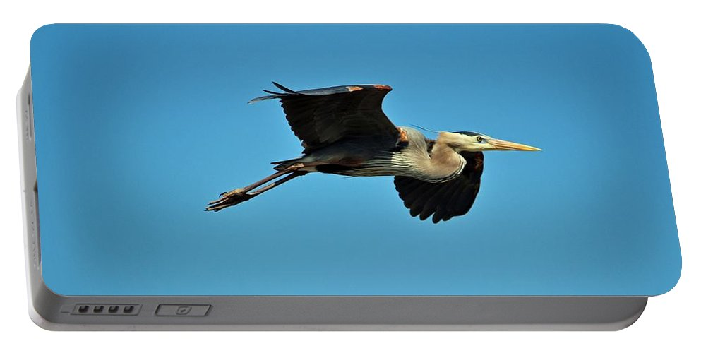 Heron Portable Battery Charger featuring the photograph Great Blue Heron In Flight by Cynthia Guinn
