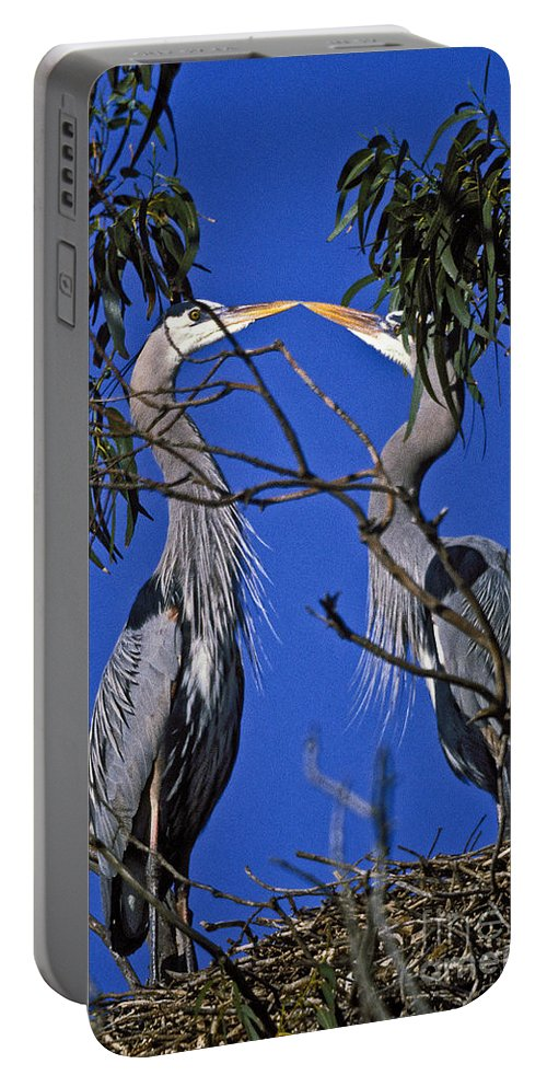 Great Blue Herons Portable Battery Charger featuring the photograph Great Blue Herons by Howard Stapleton