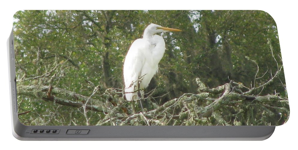 Landscape Portable Battery Charger featuring the photograph Great Egret Lookout by Ellen Meakin