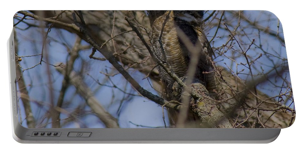 Owl Portable Battery Charger featuring the photograph Great Horned Owl On Watch by Crystal Heitzman Renskers