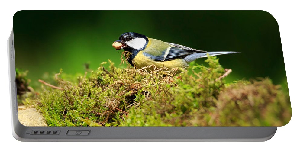 Great Tit Portable Battery Charger featuring the photograph Great Tit by Louise Heusinkveld