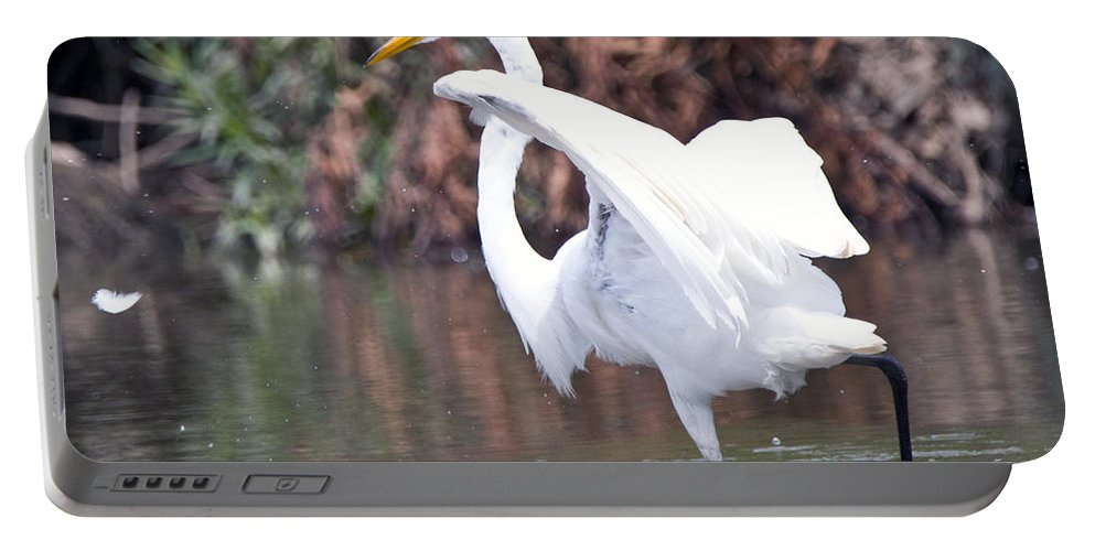 Great Blue Heron Photographs Portable Battery Charger featuring the photograph Great White Egret Fishing 1 by Vernis Maxwell