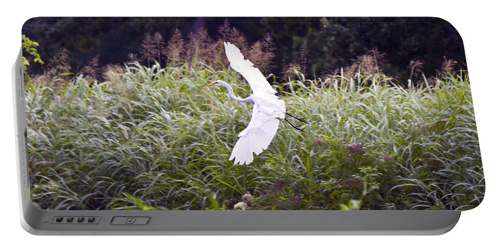 Great Blue Heron Photographs Portable Battery Charger featuring the photograph Great White Egret Flying 2 by Vernis Maxwell
