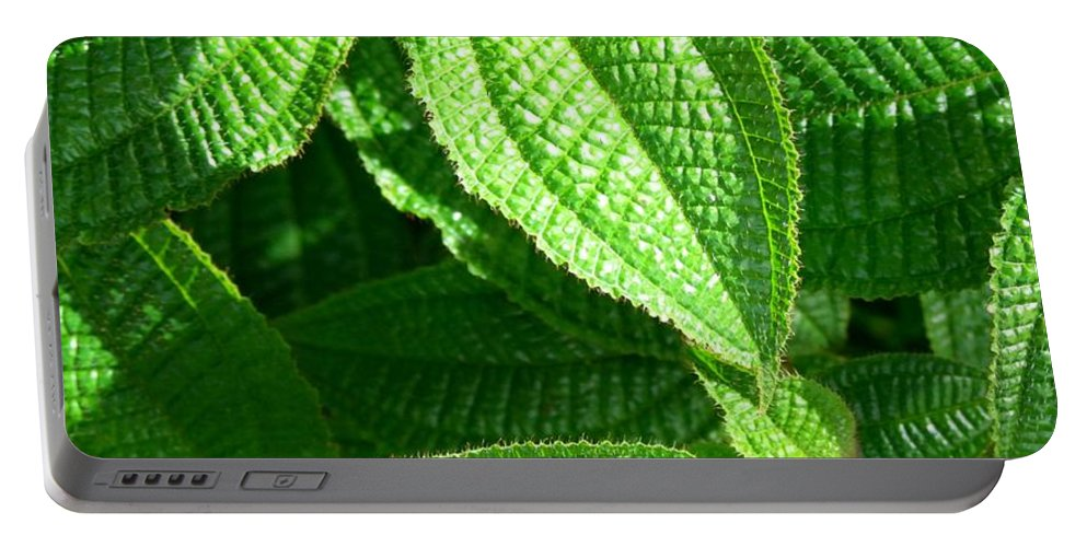 Leaves Portable Battery Charger featuring the photograph Green And Ruffled by Mary Deal