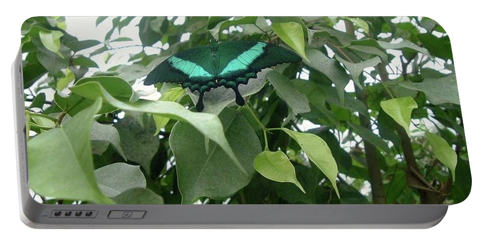 Green Butterfly Portable Battery Charger featuring the photograph Green Banded Butterfly by Barbara Griffin