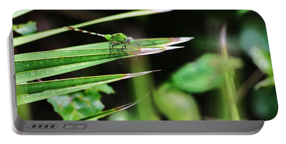 Green Portable Battery Charger featuring the photograph Green Dragon by Chuck Hicks