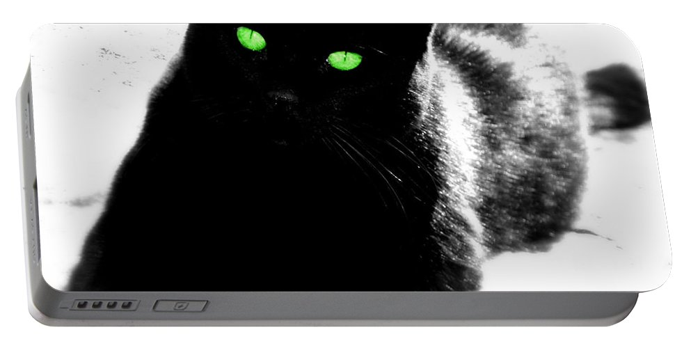 Cat Portable Battery Charger featuring the photograph Green Eyed Kitty by Tina Meador