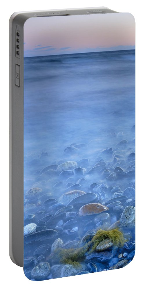 Seascape Portable Battery Charger featuring the photograph Green Kelp On The Rock by Guido Montanes Castillo