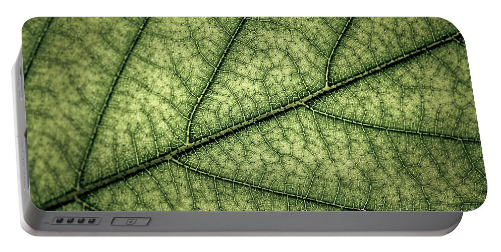Green Portable Battery Charger featuring the photograph Green Leaf Texture by Elena Elisseeva