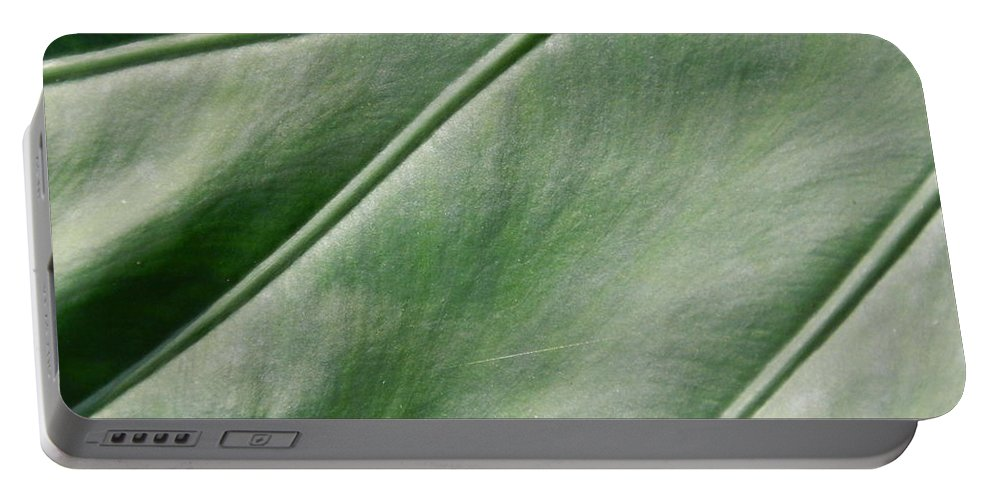 Green Portable Battery Charger featuring the photograph Green Leaf Up Close 2 by Heather Jane