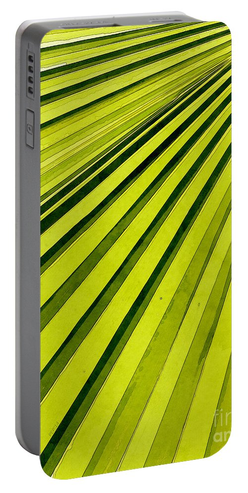 Palms Portable Battery Charger featuring the photograph Green Palm Frond by Phil Perkins