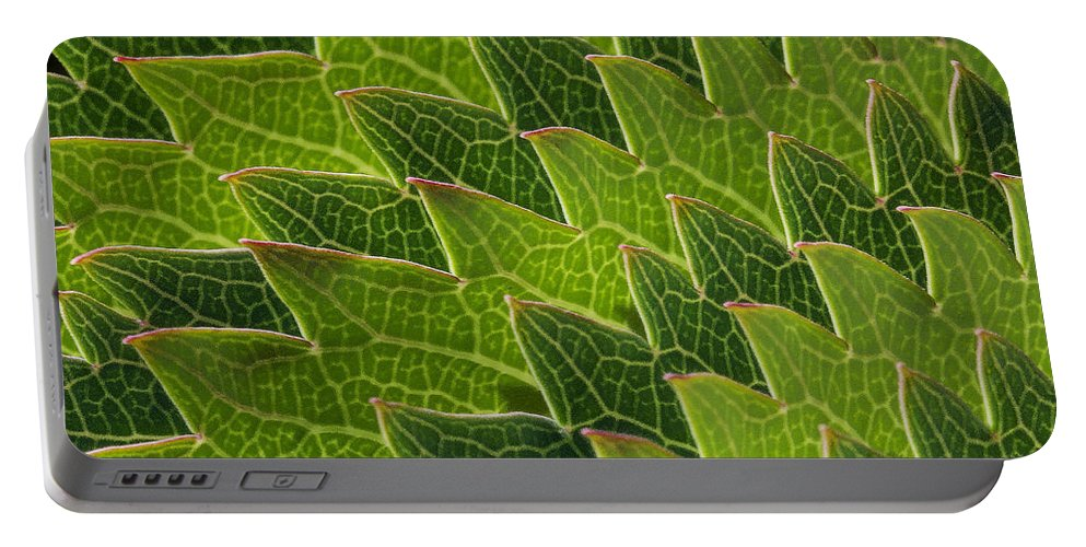 Plant.plants Portable Battery Charger featuring the photograph Green Scales Of A Dragon by Robert Woodward