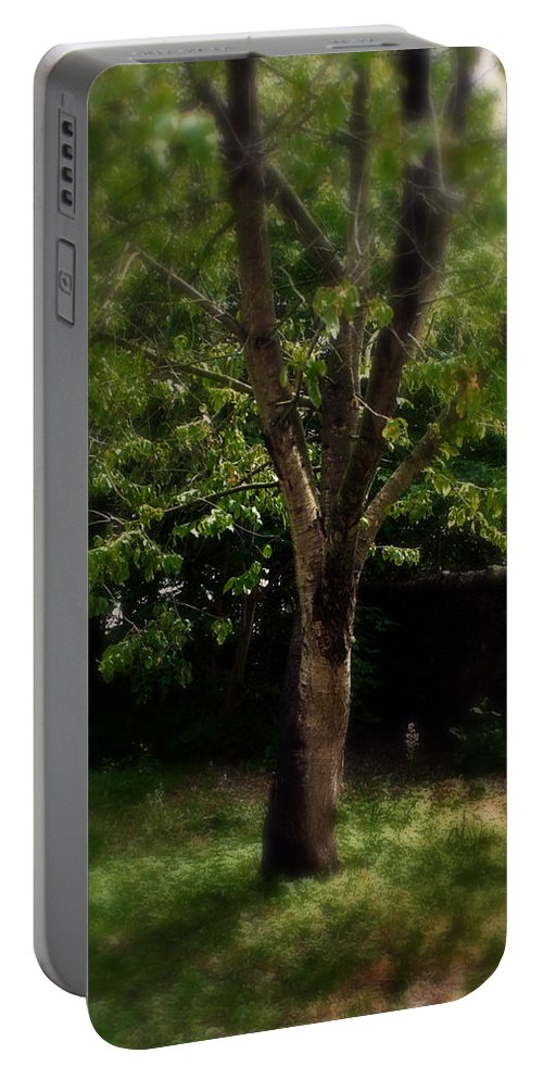 Garden Portable Battery Charger featuring the photograph Green Tree In Park by Doc Braham