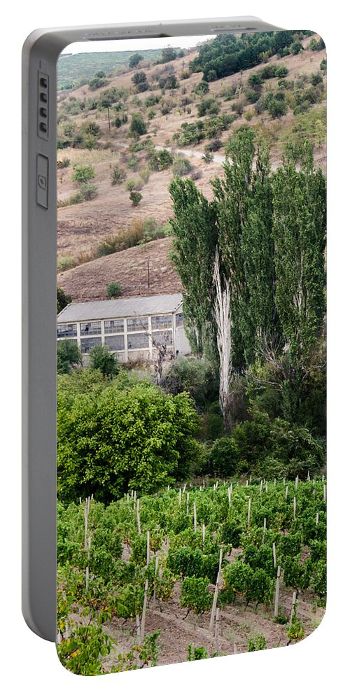 Blue Portable Battery Charger featuring the photograph Green Wine Yard by Sotiris Filippou