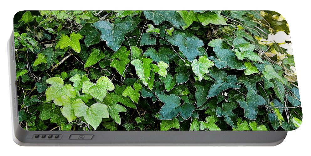 Ivy Portable Battery Charger featuring the photograph Green With Ivy by Rich Franco