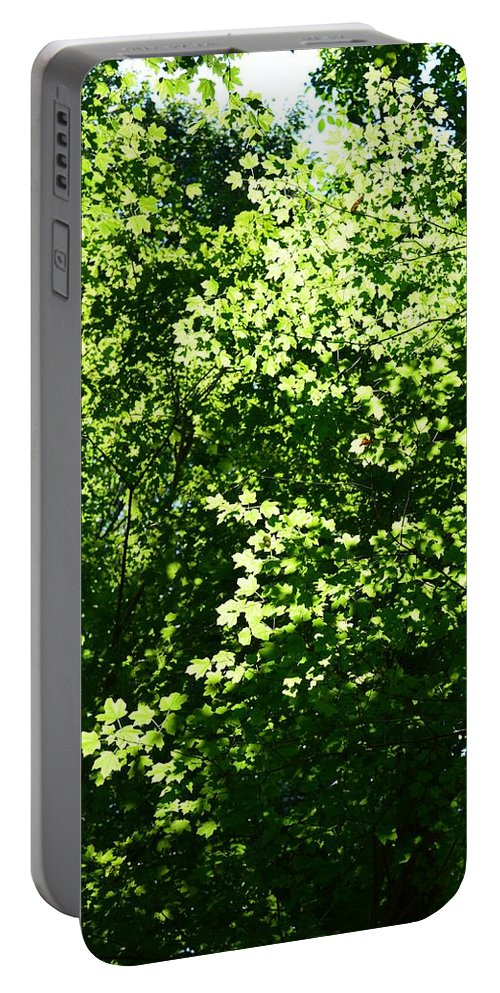 Greenleaves Portable Battery Charger featuring the photograph Greenleaves by Maria Urso