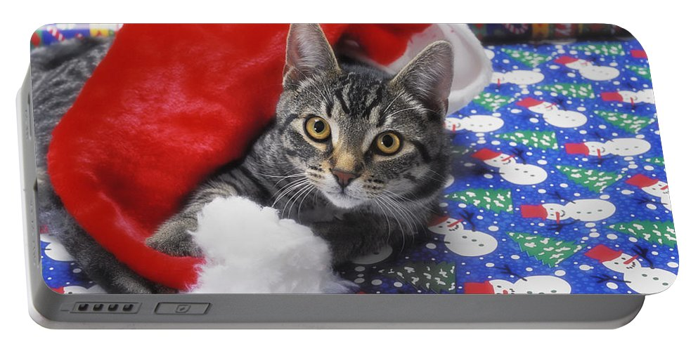 Gift Wrap Portable Battery Charger featuring the photograph Grey Tabby Cat With Santa Claus Hat by Thomas Kitchin & Victoria Hurst