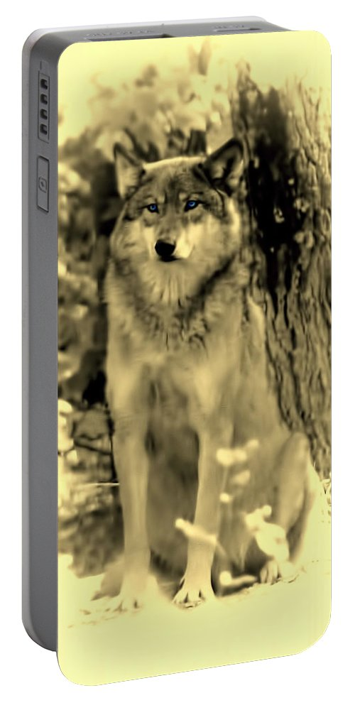 Wolf Portable Battery Charger featuring the photograph Grey Wolf Minnesota by Amanda Stadther