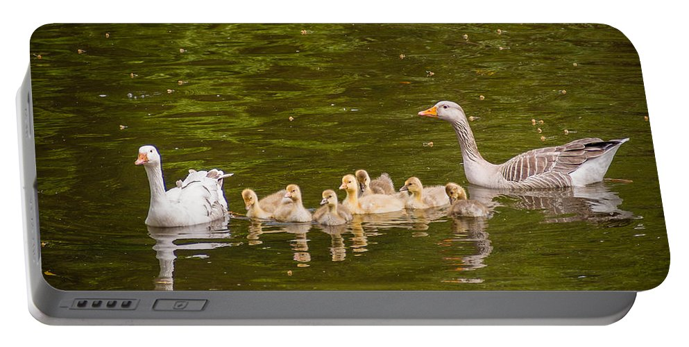 Brown Portable Battery Charger featuring the photograph Greylag Goose Family by Mark Llewellyn