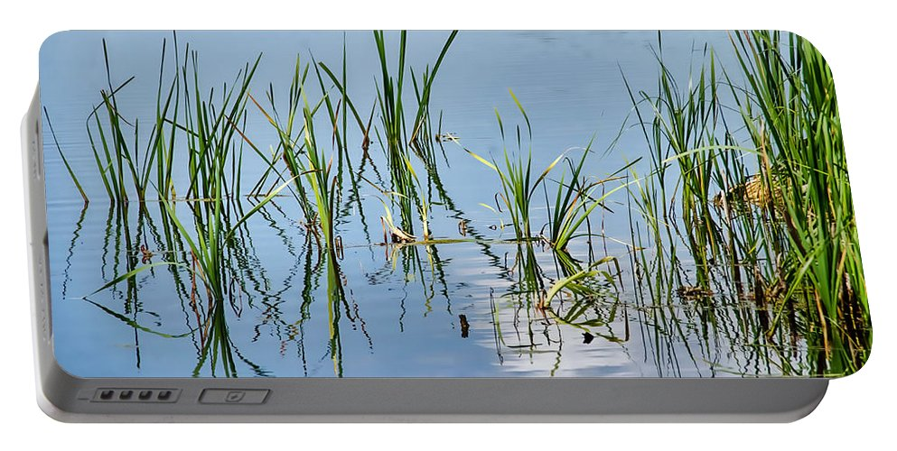 Greylake Portable Battery Charger featuring the photograph Greylake Reflections by Susie Peek