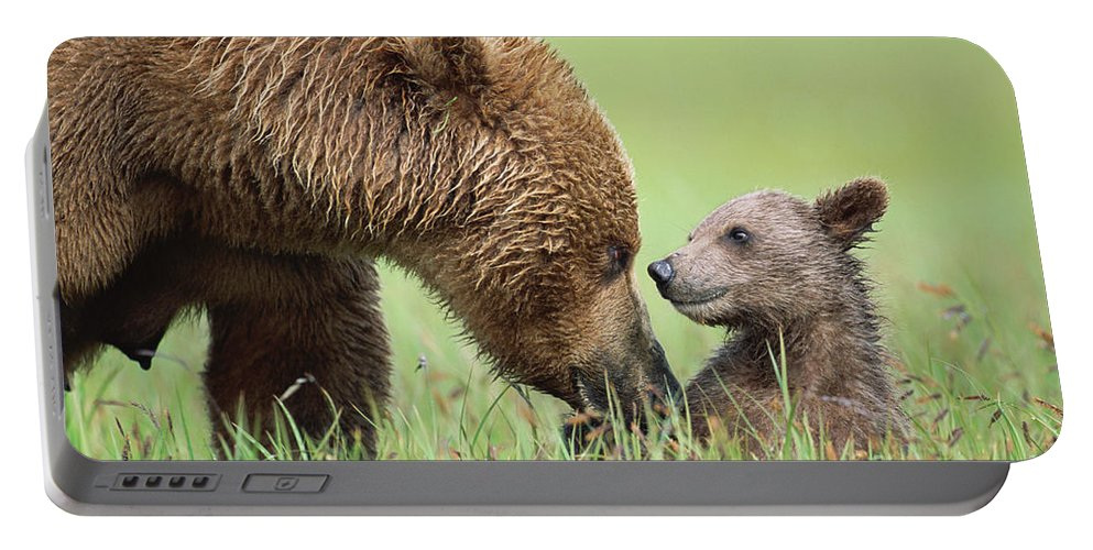 00345260 Portable Battery Charger featuring the photograph Grizzly Bear And Cub in Katmai by Yva Momatiuk John Eastcott