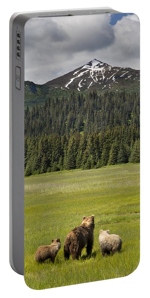 Richard Garvey-williams Portable Battery Charger featuring the photograph Grizzly Bear Mother And Cubs In Meadow by Richard Garvey-Williams