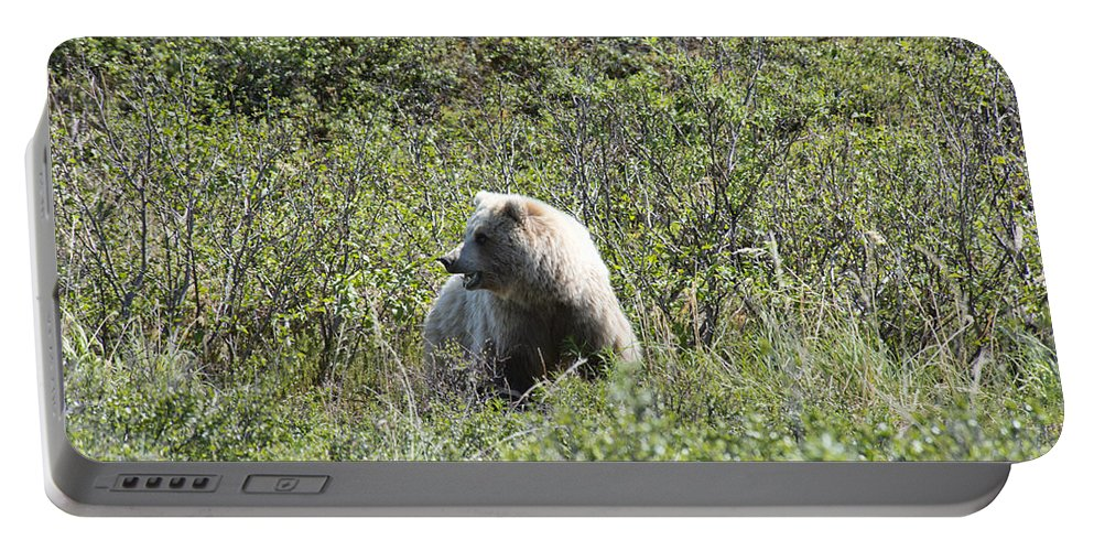 Grizzly Portable Battery Charger featuring the photograph Grizzly One by David Arment
