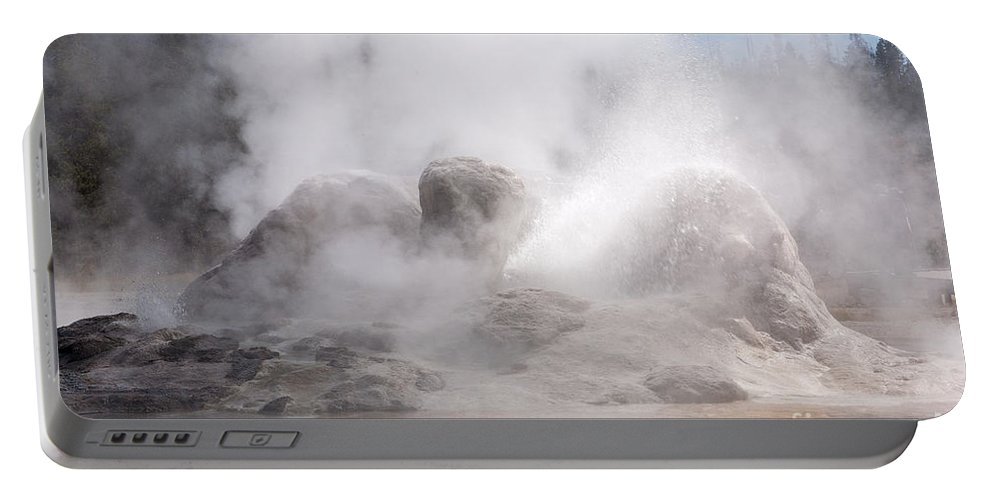 Grotto Geyser Portable Battery Charger featuring the photograph Grotto Geyser In Upper Geyser Basin In Yellowstone National Park by Fred Stearns